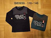 Реглан для мальчиков оптом, Grace, 116-146 см,  № B80939, фото 1