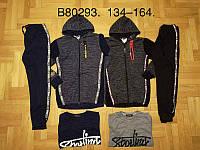 Спортивный костюм 3 в 1 для мальчика оптом, Grace, 134-164 см,  № B80293, фото 1