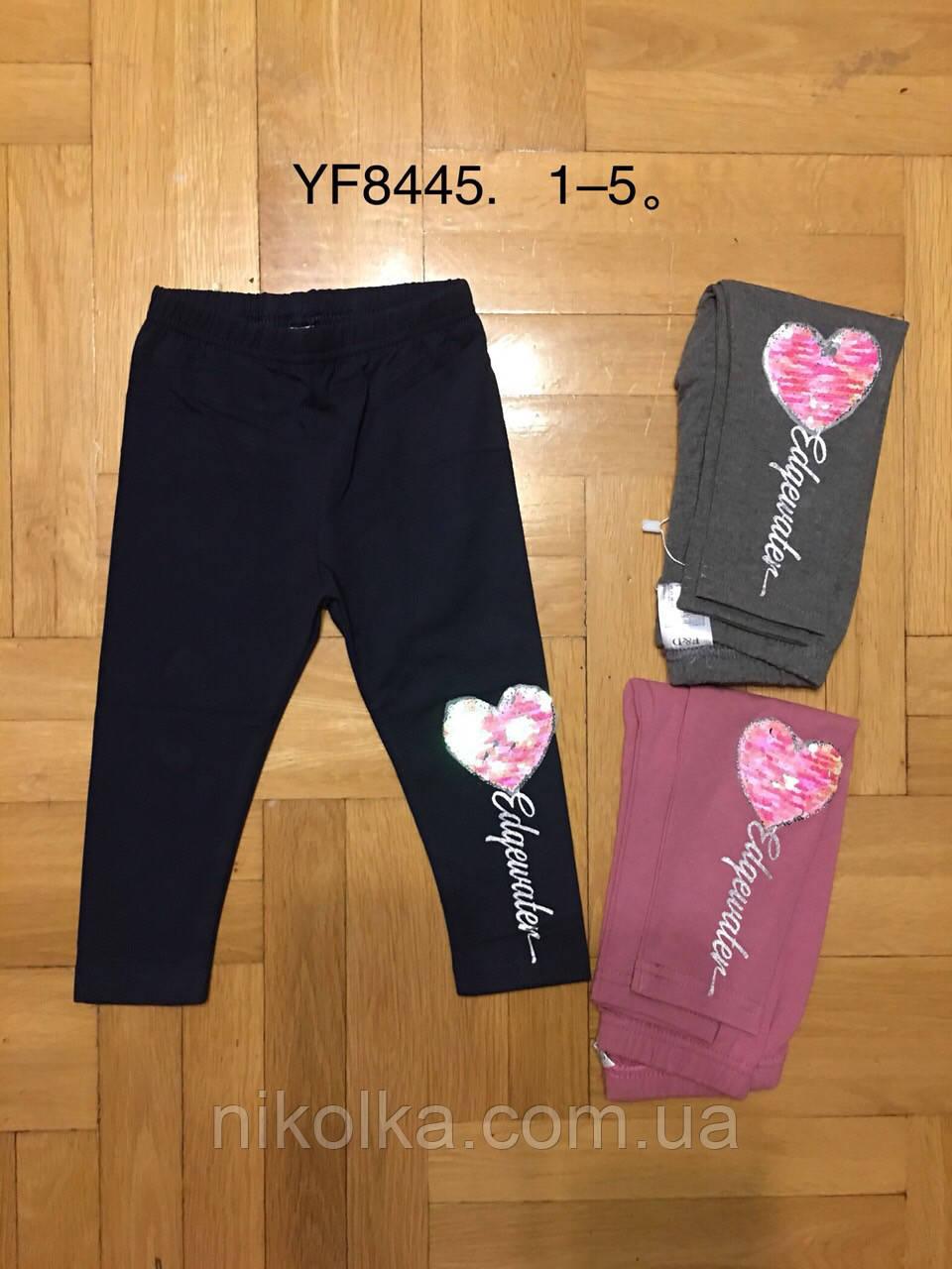 Лосины для девочек оптом, F&D, 1-5 лет.,арт.YF8445