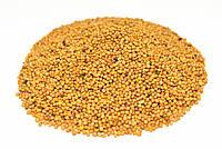 Горчица желтая семена 100 грамм