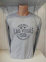 Футболка длинный рукав RBS, Las Vegas стрейч 006/ купить футболку  длинный рукав оптом