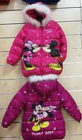 Куртка на флисе для девочек оптом, Disney, 98-134 рр., арт.82608, фото 2
