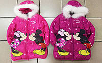 Куртка на флисе для девочек оптом, Disney, 98-134 рр., арт.82608, фото 1
