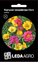 Семена портулака Сингл,  0,05 гр., грандифлора смесь
