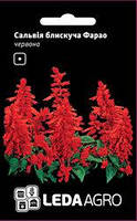 Семена сальвии Фарао, 0,05 гр., блестящая красная