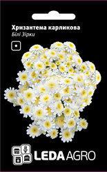 Семена хризантемы Белые Звезды, 0,2 гр., карликовая