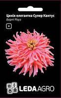 Семена циннии Бэрпи Роуз, 0,3 гр., элегантная Супер Кактус