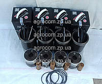 Поршневая группа МТЗ-80, МТЗ-82, Д-240, Д-243