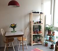 Стеллаж, сосна хвойное дерево, 64x28x159 см Икеа Albert, 001.119.94 Ikea