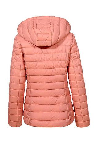 Куртка  женская Glostory демисезонная, фото 2