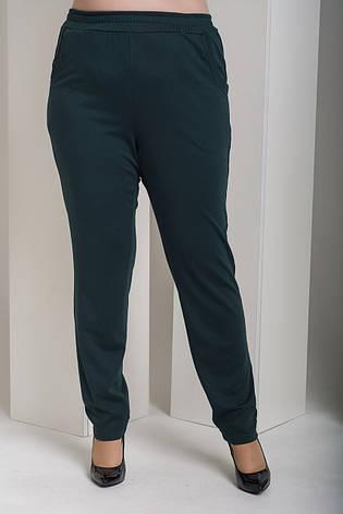 Зеленые брюки с высокой посадкой для полных Лион, фото 2