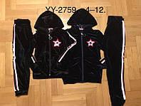 Велюровый костюм 2 в 1 для девочек оптом, Lemon Tree, 4-12 лет,  № YY-2759, фото 1