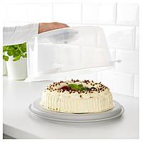 Контейнер для торта, 36 см Икеа Krispig, 203.364.07 Ikea