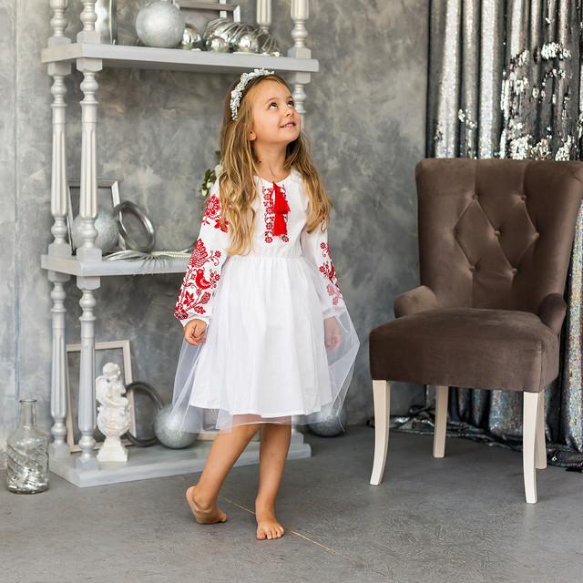 Детское платье вышиванка для девочки Птицы