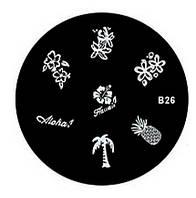 Диски стемпинг для ногтей серии В 5,5 см  B26 BTW /01
