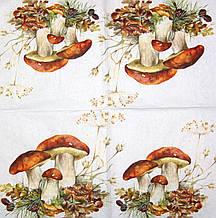 Серветка для декупажу Білі гриби 7681