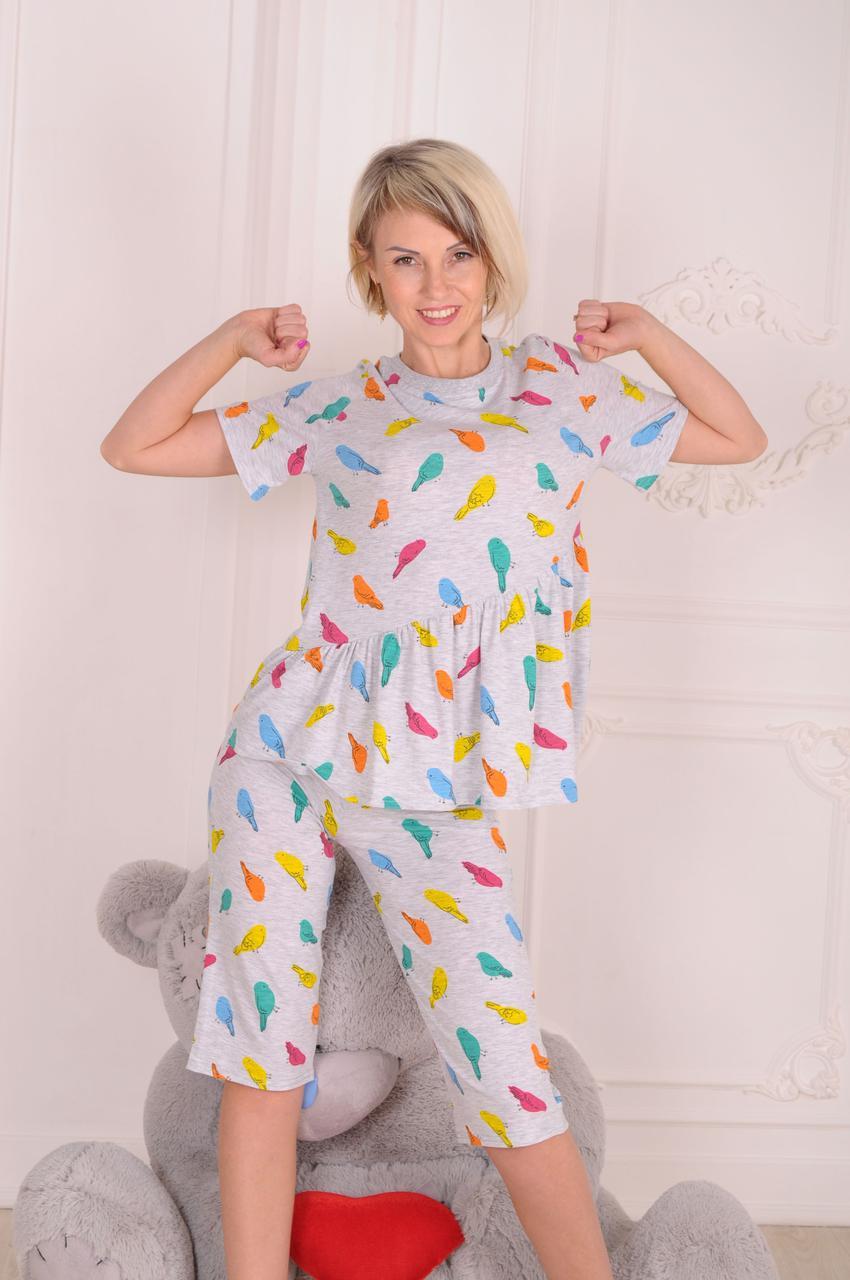 Пижама женская трикотажная с шортами Птички размеры 40-46