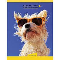 "Блокнот на пружине А5 пластиковая обложка 144 листа ""YES"" Human friends. Dog (3) №681011"