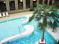 Плитка для бассейнов Бассейны в развлекательном центре