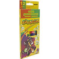 Карандаши цветные двусторонние Пегашка 1011-12 24 цвета 12 шт., фото 1
