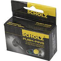 Кнопки-гвоздики Scholz 30 шт. цветные 4841/04110060