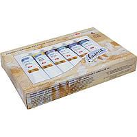 Масляные краски Невская палитра ЗХК Ладога 6 цветов по 46мл в тубе картонная коробка 350382