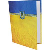 """Папка Economix """"К подписи"""" E30901-05 А4 желто-голубая"""