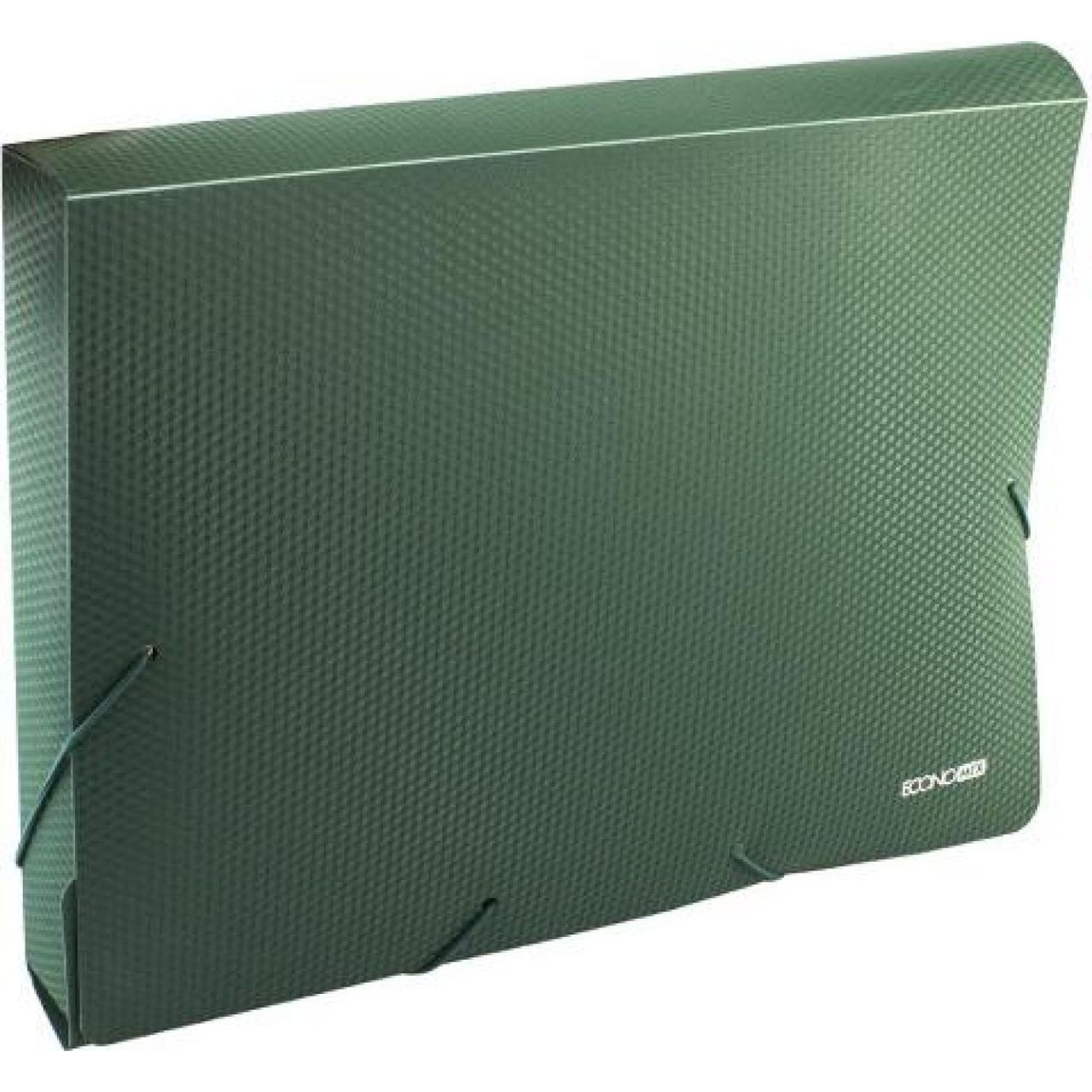 Папка-бокс Economix А4 40мм пластиковая на резинке зеленая E31402-04