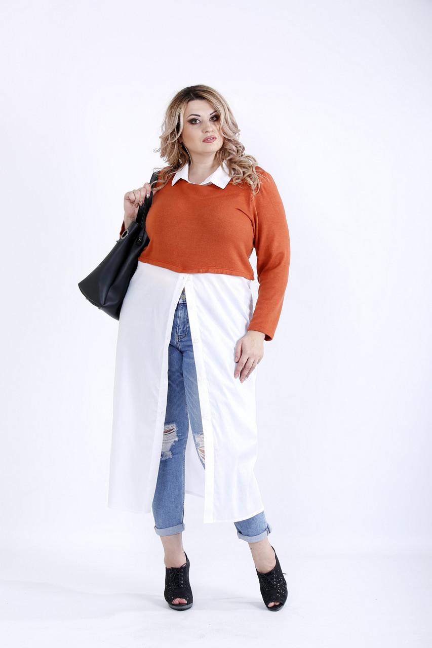 Терракотово-белая блузка | 0891-3