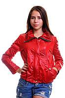 Куртка осень женскаяFEYA-4650