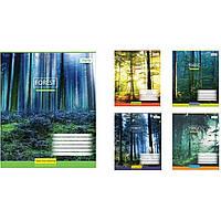Тетрадь 1 Вересня 60 листов линия Magic forest-17 (160) №760422 (10)