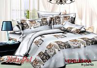Двуспальный набор постельного белья 180*220 из Ранфорса №18763 KRISPOL™