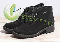 Замшевые женские ботинки Alexander 854  ч-з, фото 1