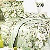 Комплект полуторного  постельного белья ТЕП  Жасмин