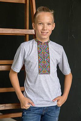 Вишиванка для хлопчика Котигорошко на сірому – короткий рукав
