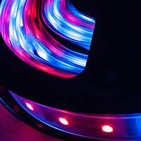 Dilux - Світлодіодна стрічка RGB 5050 60LED/m IP68 вологозахищена