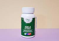 Амла - 500 мг, считается одним из самых мощных омолаживающих средств / Amla, Apollo / 60 таб