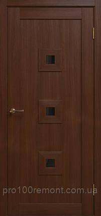 Дверное полотно NT-5 Notte, фото 2