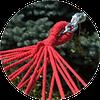 Цветной гамак с рейками на железном каркасе (XL 200x100 см), фото 3