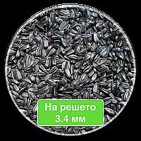 Кондитерский подсолнечник семена подсолнечника Калибровка 3.4