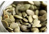 Масло тыквенное (тыквенных семечек) Olio di semi di Zucca CrudOlio Organic, 250 мл., фото 4