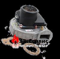 Вентилятор на котел Ariston GENUS PREMIUM HP 65,85,100 кВт 64280528