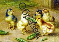"""Схема для вышивки нитками """"Цыплята"""""""