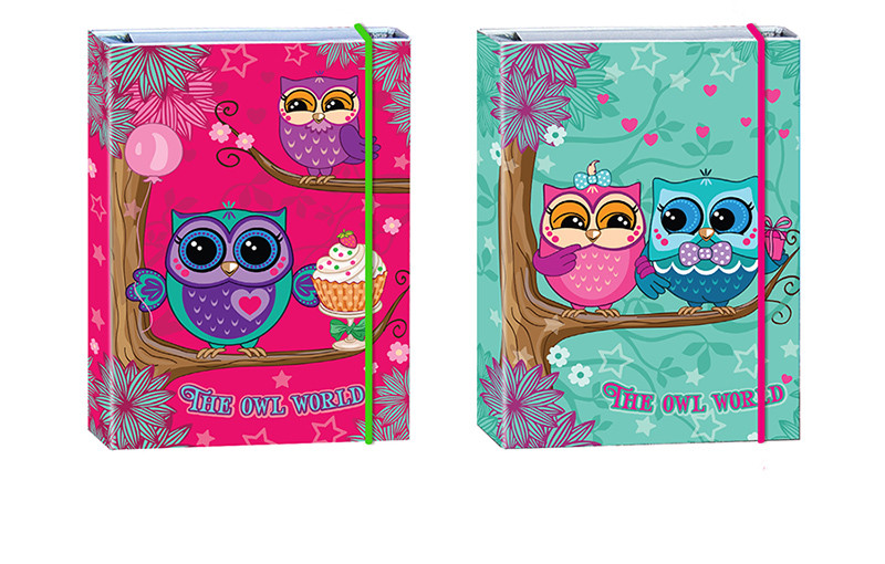 Папка для тетрадей В5 Kidis THE OWL WORLD 8915-0310, на резинке, картон