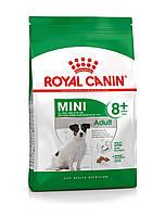 Для мелких пород старше 8 лет Royal Canin Mini Adult 8+, 2 кг, корм