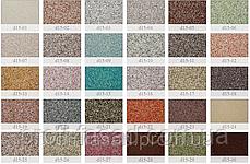 Мозаїчна штукатурка FTS d15-21, фото 2