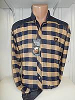 Рубашка мужская SENATO длинный рукав, полу-кашемир, клетка  006\ купить рубашку