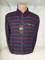 Рубашка мужская SENATO длинный рукав, полу-кашемир, клетка  003\ купить рубашку