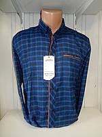 Рубашка мужская SENATO длинный рукав, полу-кашемир, клетка  004\ купить рубашку