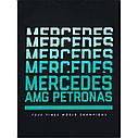 Оригинальная футболка мужская Mercedes AMG Petronas Motorsport T-Shirt, Men's, Black (B67996053), фото 2